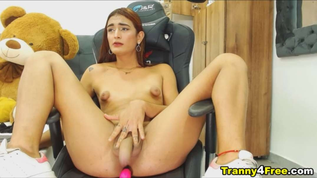 Shy Shemale With Pretty Huge Dick